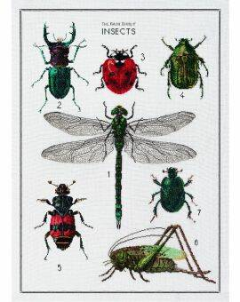 Borduurkit aida history of insects